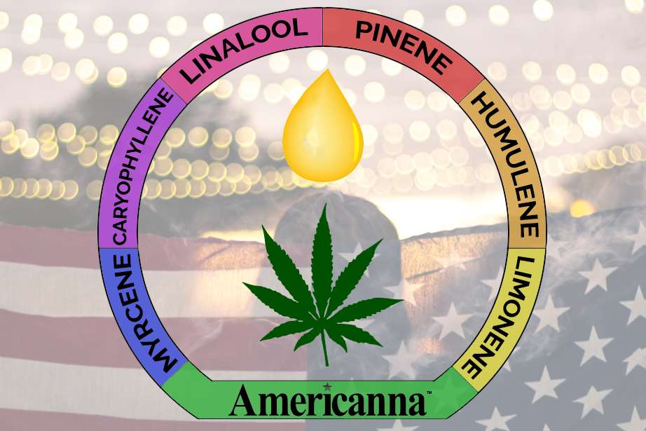 Americanna blog - cannabis terpenes flavor aroma pinene caryophyllene myrcene linalool humulene limonene terpene marijuana weed 420 plant holistic vape pen oil cbd thc cannabinoid cannabinoids